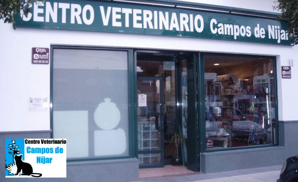 Bienvenida blog Centro Veterinario Campos de Níjar