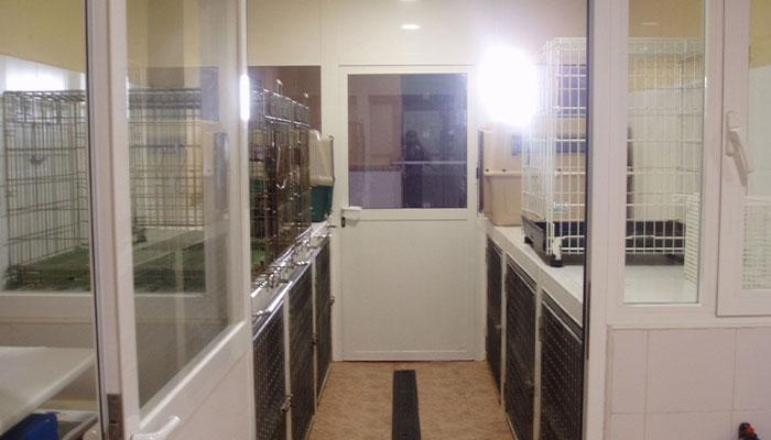 Hospitalización veterinaria 24h en veterinario en San Isidro de Níjar, Almería